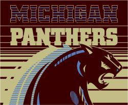 Michigan Panthers 1983 - 84